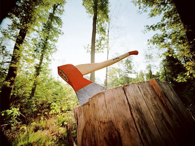 Картинки по запросу лесной пень топор